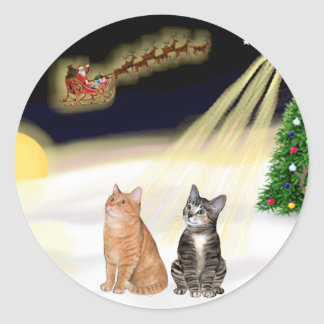 Night Flight - Two Tabby Cats Classic Round Sticker