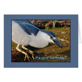 Night Heron Birthday Card
