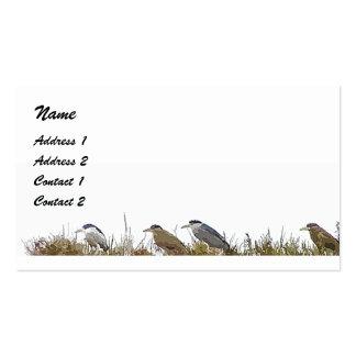 Night Herons Business Card