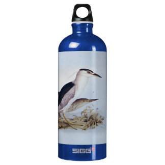 Night Herons by Edward Lear - Bird Paintings Aluminum Water Bottle