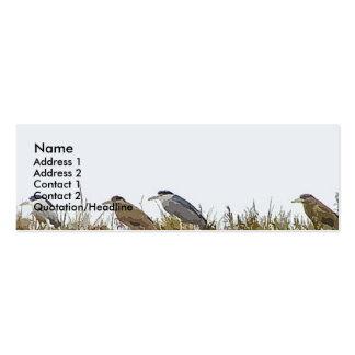 Night Herons Profile Card Business Card