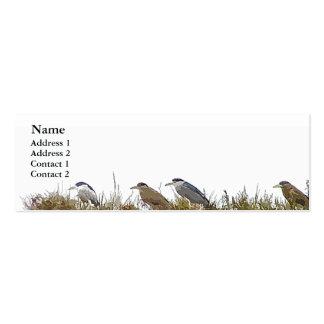 Night Herons Profile Card Business Card Templates
