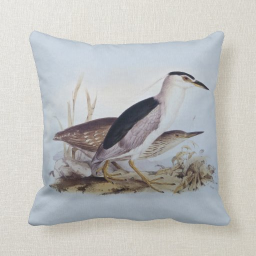 Night Herons - Vintage Painting by Edward Lear Throw Pillows