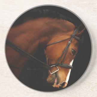 Night Horse Coasters