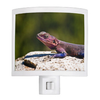 Night light featuring image of lovely lizard