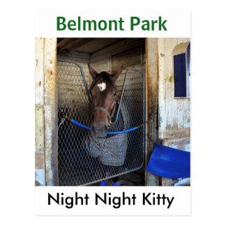 Night Night Kitty Postcard