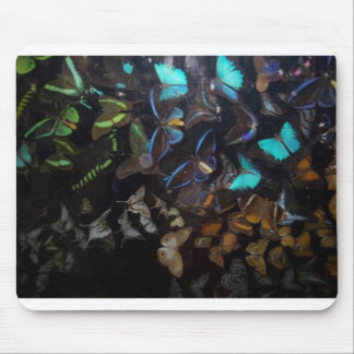 NIGHT OF 1000 BUTTERFLIES MOUSE PAD