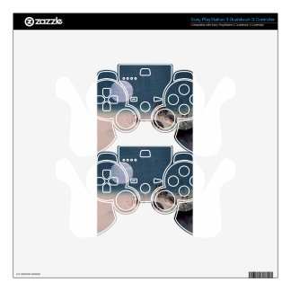 Night of the Quails PS3 Controller Skins
