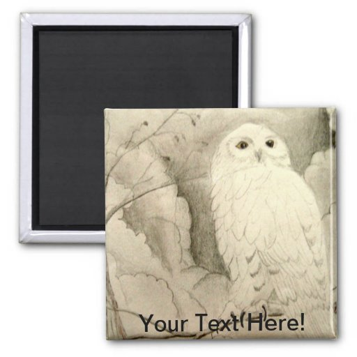 Night Owl 2 Inch Square Magnet