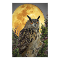 night owl full moon stationery