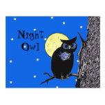 Night Owl in the Moon PostCard