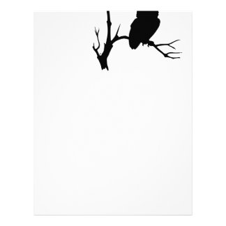 night owl on tree branch custom letterhead