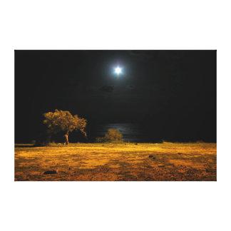 Night scene by the riverside canvas print