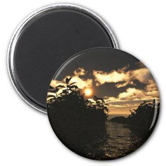 Night Skies Magnet