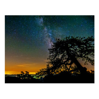 Night Sky From Mountain Postcard