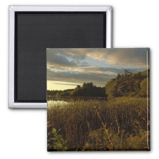 Night Sky I - Glory at Dusk 2 Inch Square Magnet