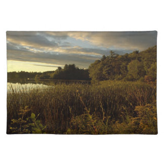 Night Sky I - Glory at Dusk Cloth Placemat