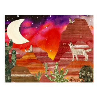 Night Songs Coyotes Postcard
