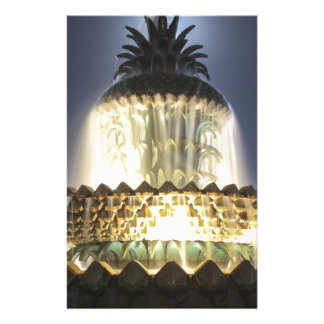 Night Time Pineapple Fountain Stationery Design