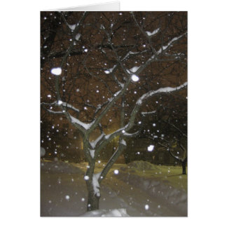 Night-time snowstorm at RPI Card