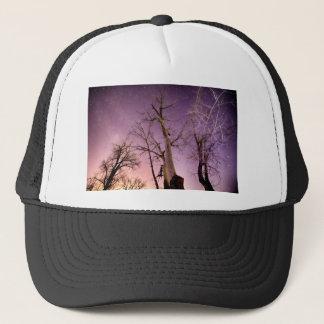 Night to Day Trucker Hat