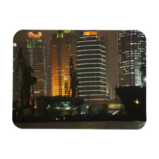 Night view of highrises in Pudong New Area by Rectangular Photo Magnet