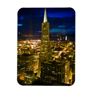 Night view of San Francisco. Magnet