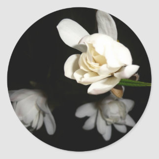 Night White Flower Jasmine Beauty Pure Bride Tulip Classic Round Sticker