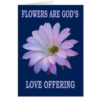 Nightblooming Cactus Flower as card
