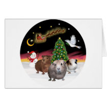 NightFlight - 3 Guinea Pigs Card