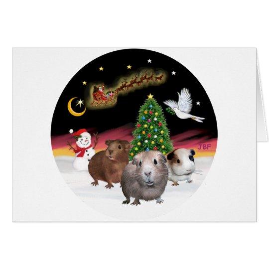 NightFlight - 3 Guinea Pigs Card