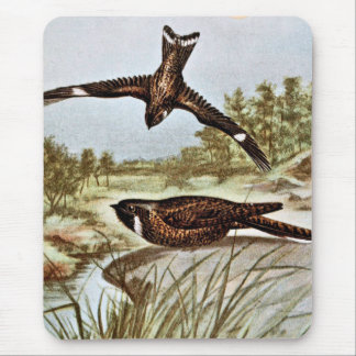 Nighthawk and Whipporwhil Mouse Pad