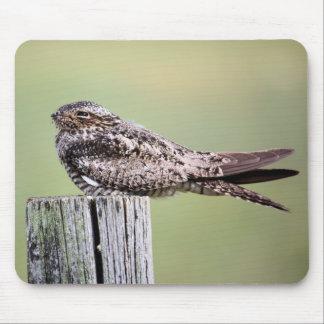 Nighthawk común alfombrilla de ratón