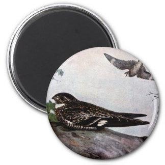Nighthawk secreto imán redondo 5 cm