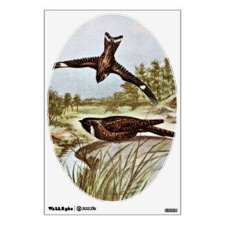 Nighthawk y Whipporwhil