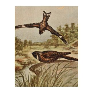 Nighthawk y Whipporwhil Cuadros De Madera