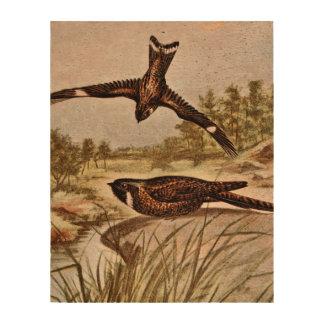 Nighthawk y Whipporwhil Impresiones En Corcho