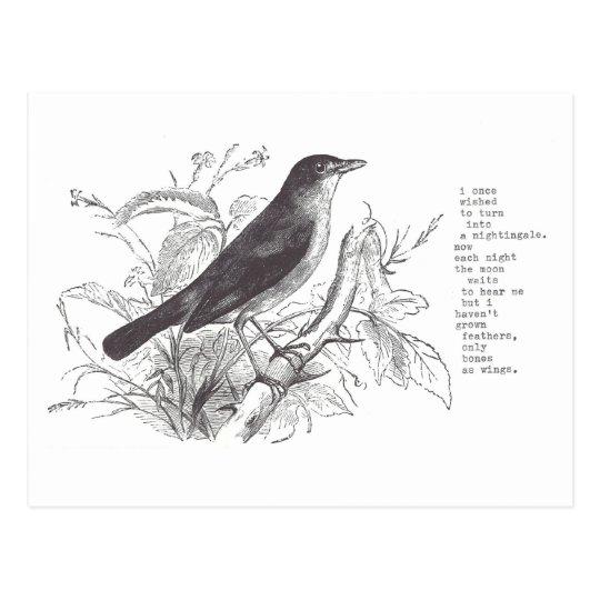 nightingale postcard