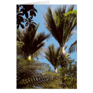Nikau Palm Card