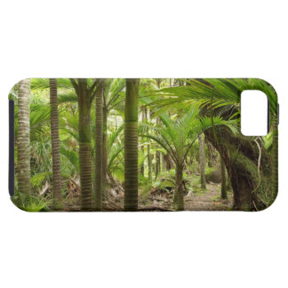 Nikau Palms, Heaphy Track, near Karamea, iPhone SE/5/5s Case