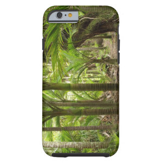 Nikau Palms, Heaphy Track, near Karamea, Tough iPhone 6 Case