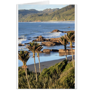 Nikau palms West Coast New Zealand Card