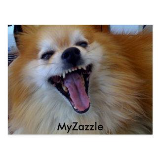 niki, MyZazzle Postcard