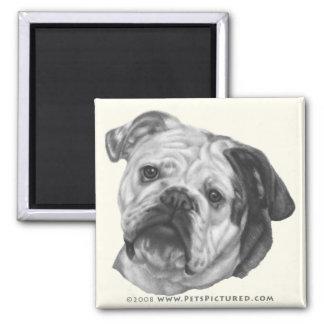 Nikki, Bulldog 2 Inch Square Magnet