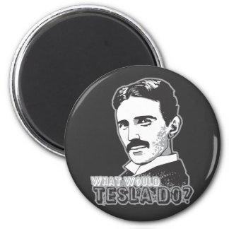 Nikola Tesla Imán De Frigorifico