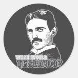 Nikola Tesla Pegatina