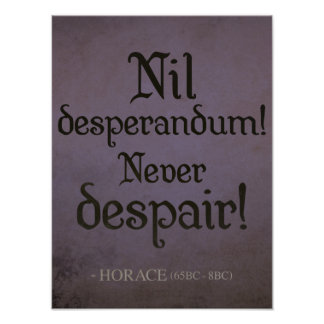 Nil desperandum! Never Despair! Poster