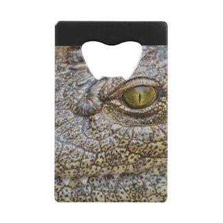 Nile crocodile from Africa Credit Card Bottle Opener