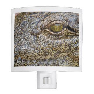 Nile crocodile from Africa Nite Lights