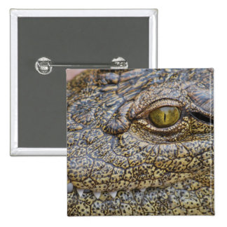 Nile crocodile from Africa Pinback Button